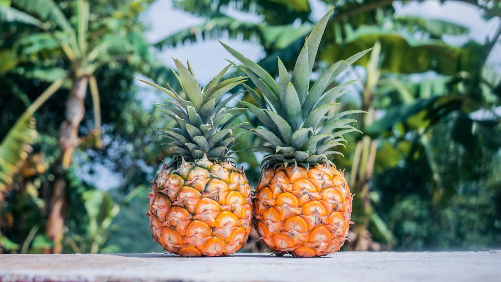 How Does A Pineapple or Two Help Pay Off The Mortgage